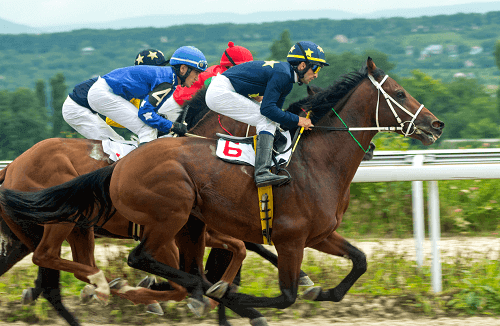 Horse Racing Betting Strategy Australia