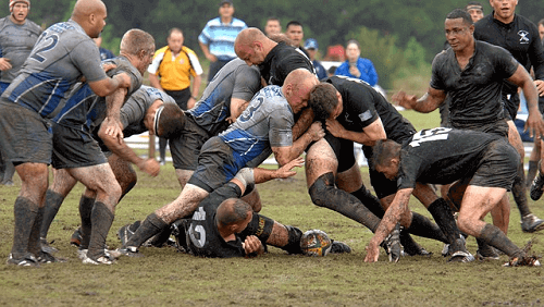 Rugby Betting Australia