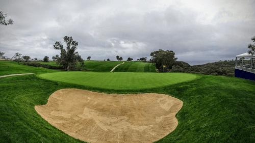 Torrey Pines Guide Australia
