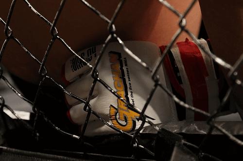 UFC Betting Australia