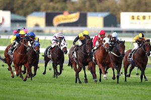 South Australia Horse Racing