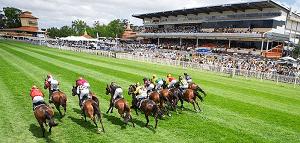 Western Australia Horse Races